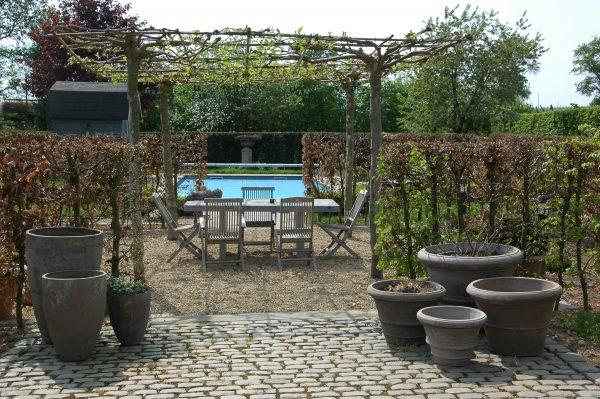 franse tuin ontwerpen met zwembad
