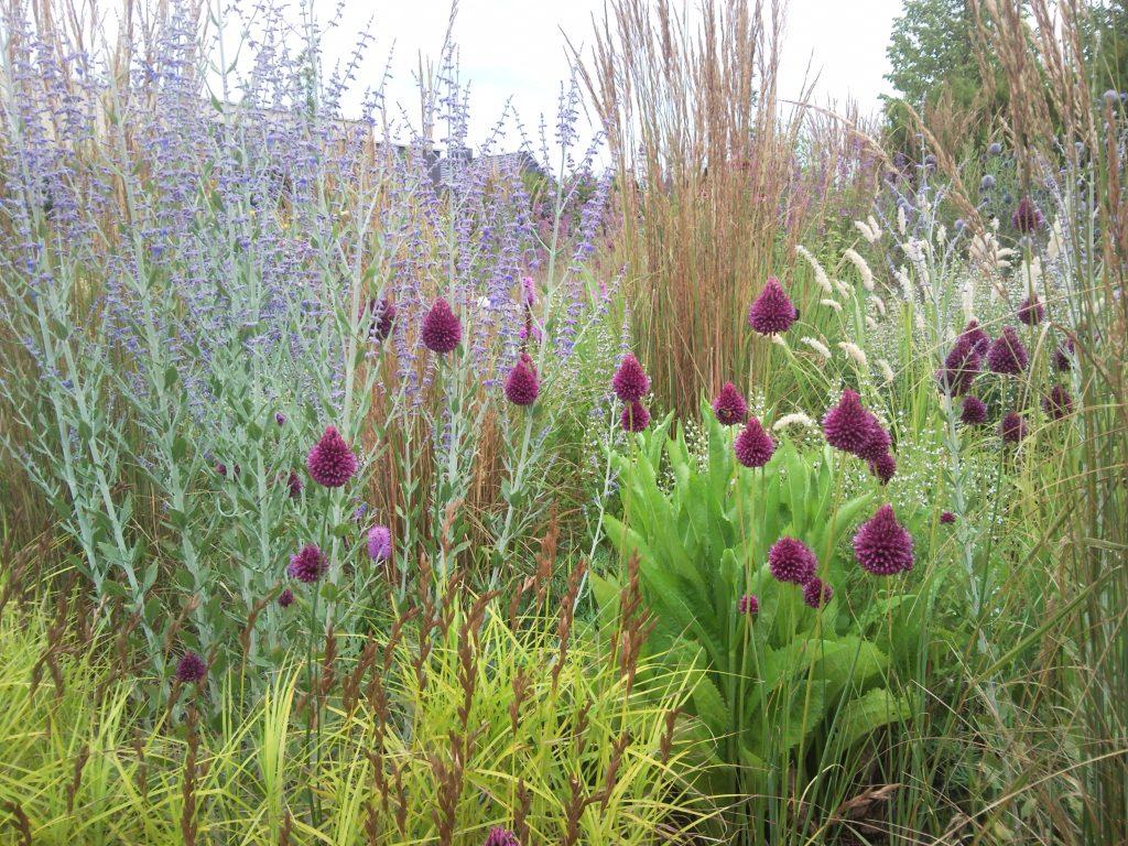 Beplantingsadvies tuinontwerp en beplantingsadvies for Lurie garden planting plan