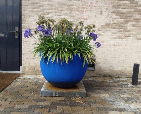 gekleurde potten