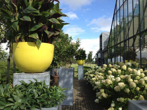 Moderne tuinen ontwerpen door tuinarchitect