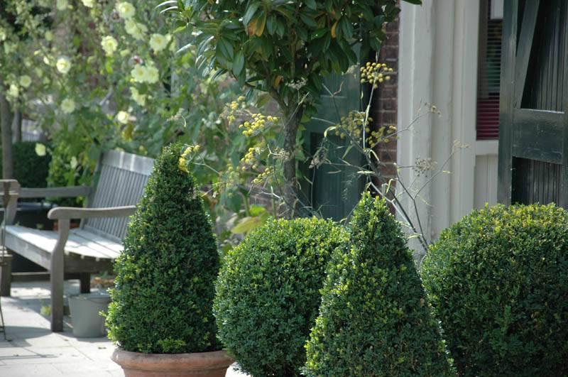 Landelijke tuin aanleggen landelijke tuin aanleggen en for Eigen moestuin ontwerpen en aanleggen