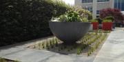 Minimalistische binnen tuin Amsterdam 7