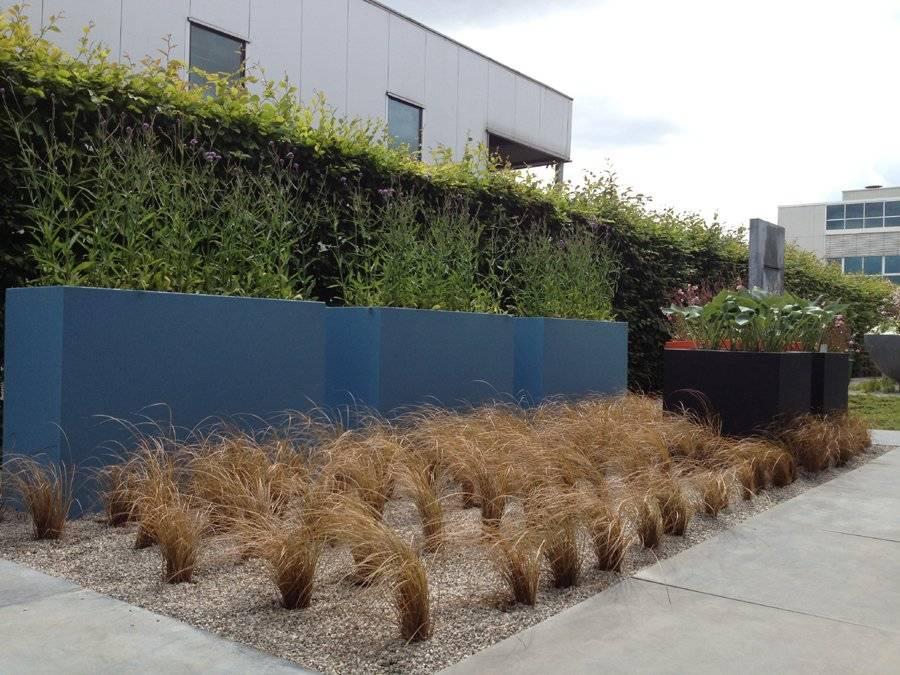 Moderne stadstuin moderne stadstuin ontwerpen en aanleggen for Tuinarchitect kleine tuin