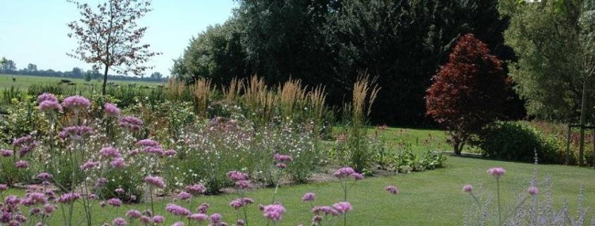 Prairie tuin ontwerpen prairie tuin ontwerpen aanleggen for Eigen moestuin ontwerpen en aanleggen