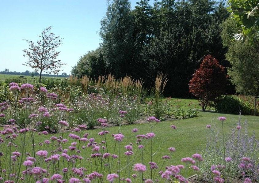Prairie tuin ontwerpen in IJsselstein
