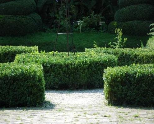 Luxe tuinen ontwerpen