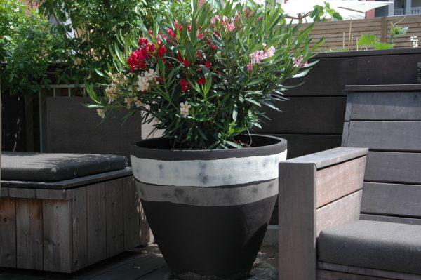 wintervast potten op het balkon
