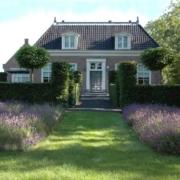 ontwerp grote tuin