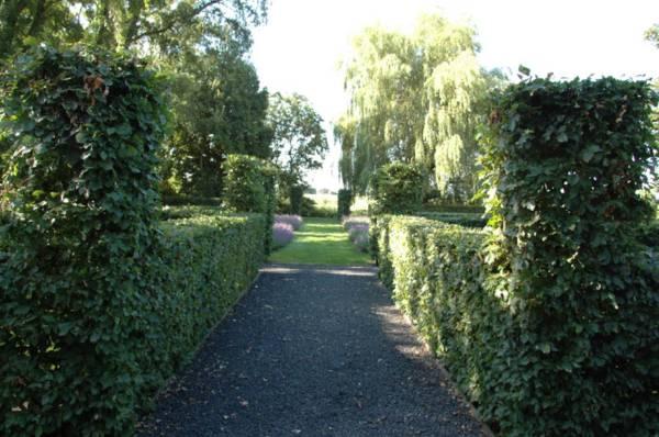 ontwerp grote tuin monique en anders