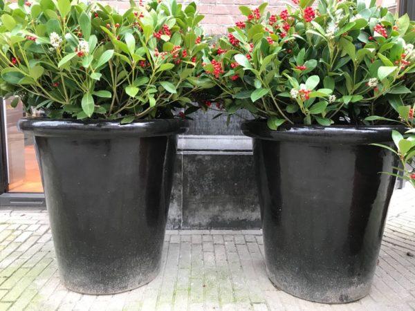 grote zwarte pot van terracotta