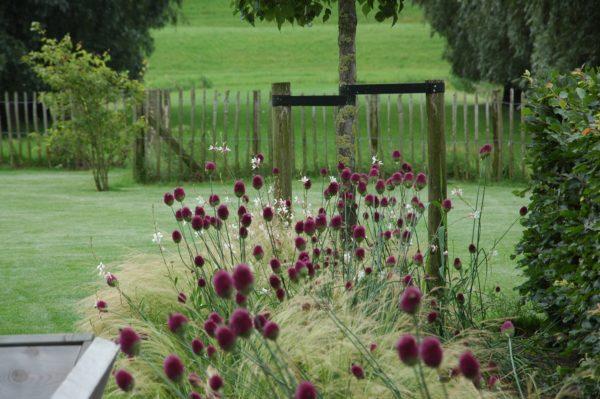 Grote landelijke tuin ontwerpen
