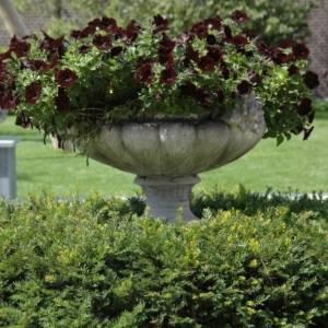 Klassieke tuin ontwerpen