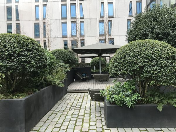 moderne binnentuin ontwerpen met privacy