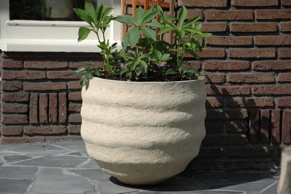 wintervaste potten en winterharde planten