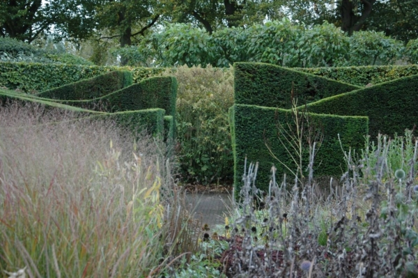 Glooiende groenblijvende hagen in natuurlijke tuin