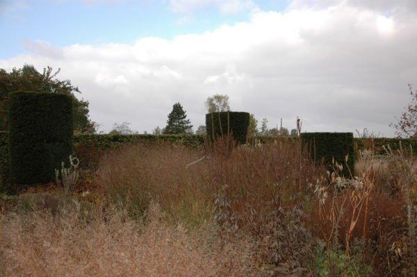 Natuurlijke tuin ontwerpen in Arnhem