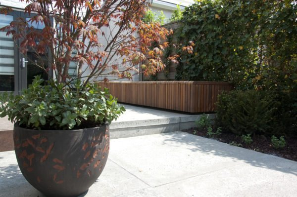kleine tuinen ontwerpen in Utrecht