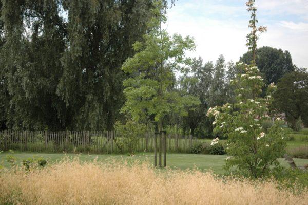 Tuin ontwerpen in landelijke omgeving