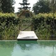 zwemvijver ontwerpen