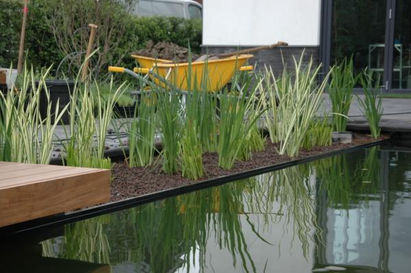 Plantenzone buitenzwembad
